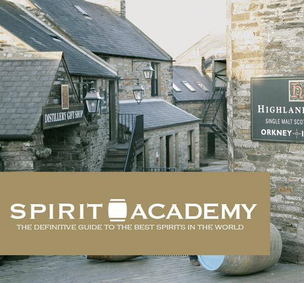 <span>Spirit Academy</span><i>→</i>